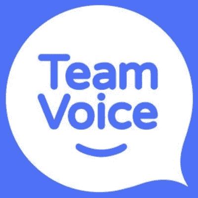 Team Voice